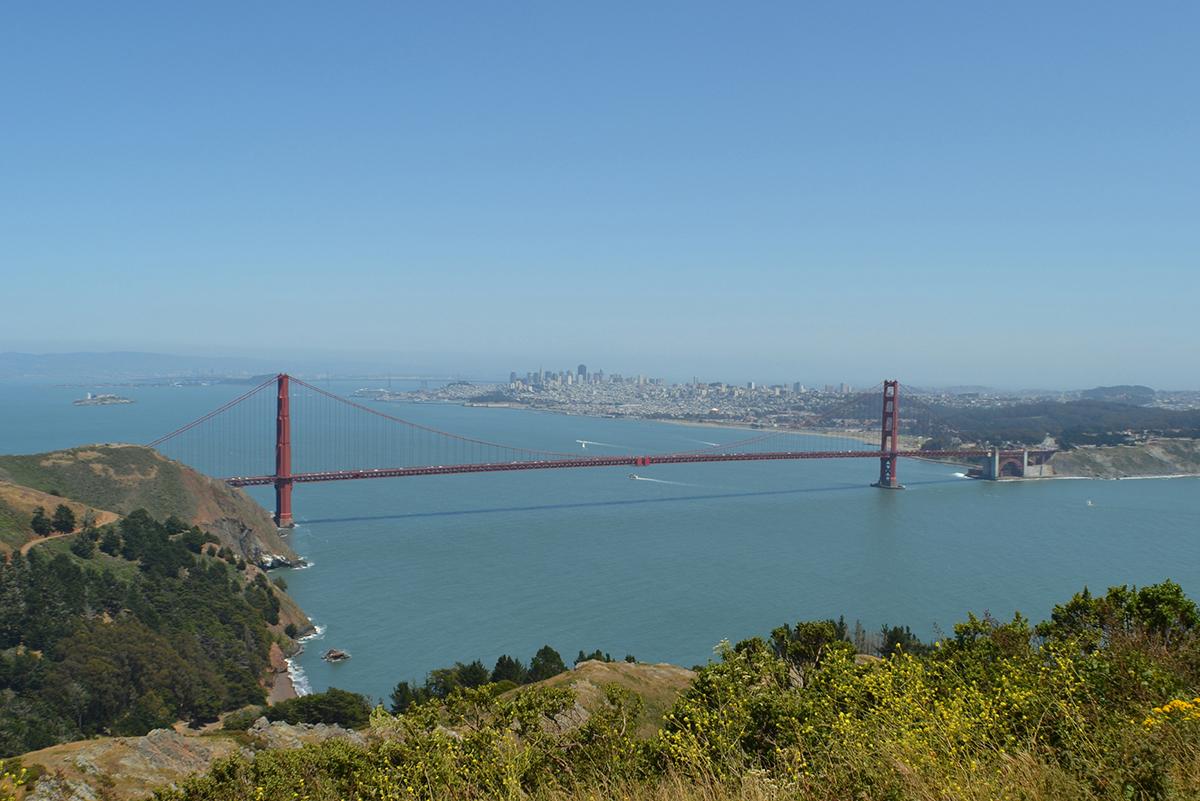 Golden Gate from Hawk Hill