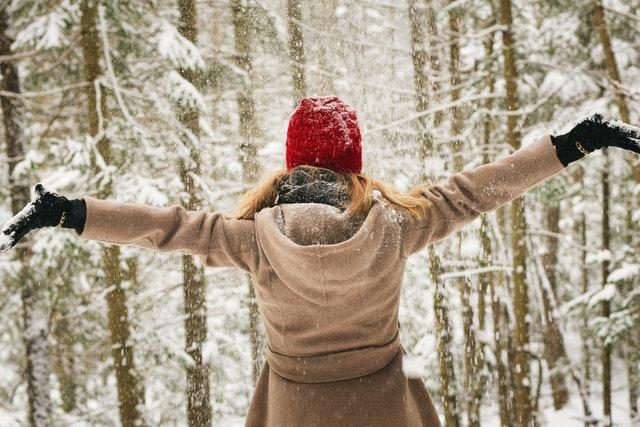 Mala de inverno